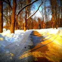 Winter im Gorkipark