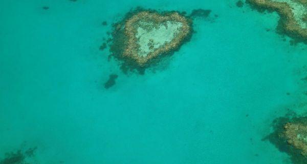 Das Heart Reef