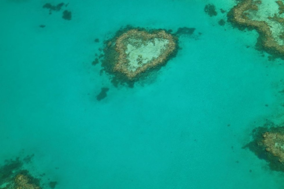 The famous heart reef at the Whitsunday Islands