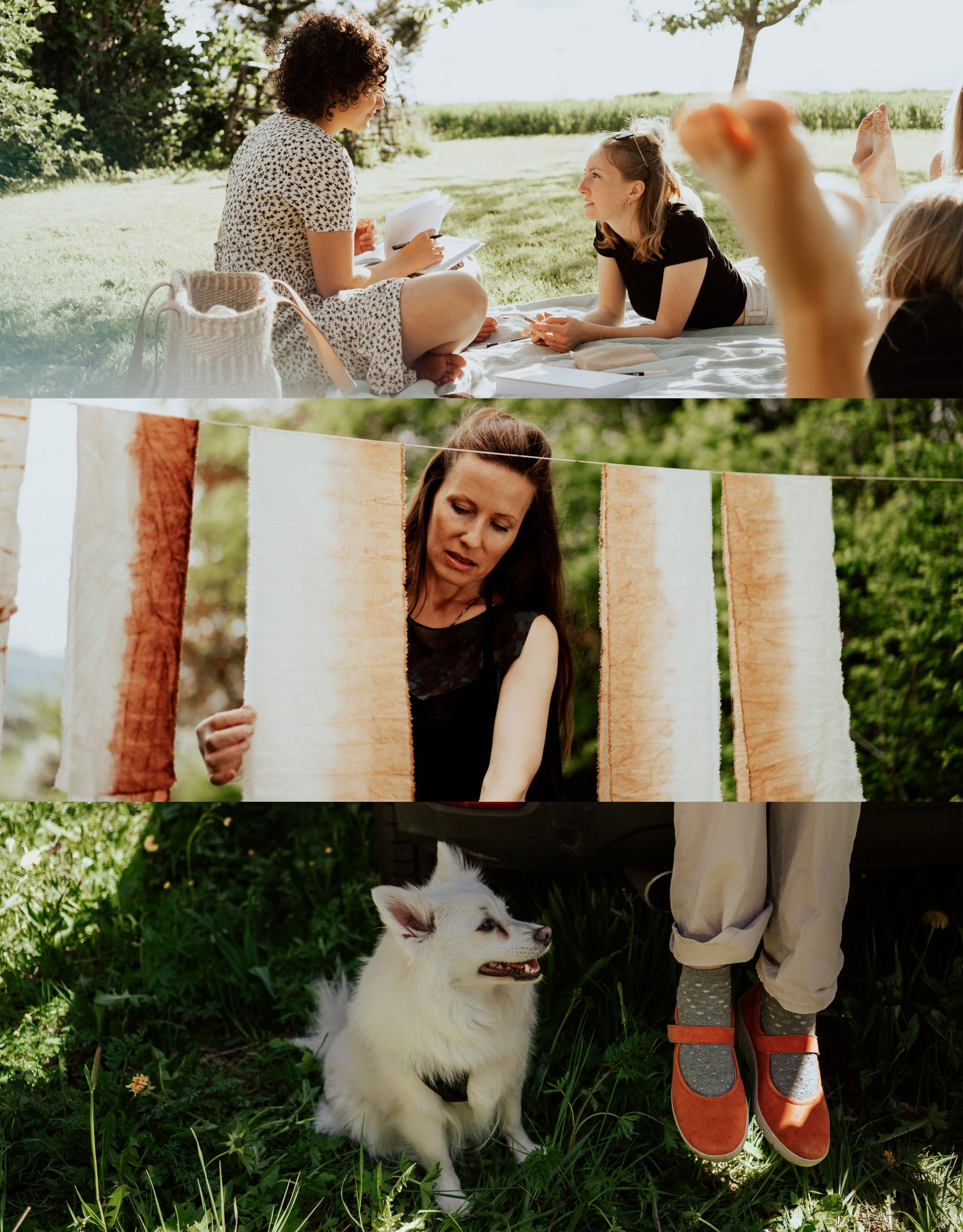 a day in your life with friends and dog