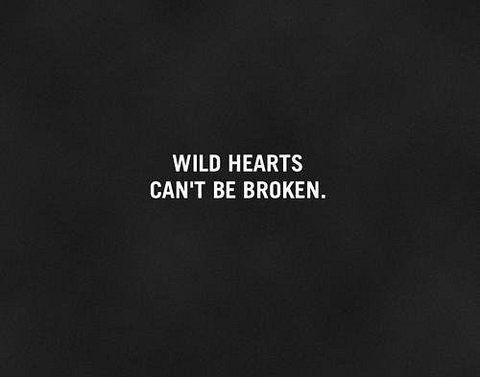 A los corazones salvajes nadie ni nada puede romperlos.