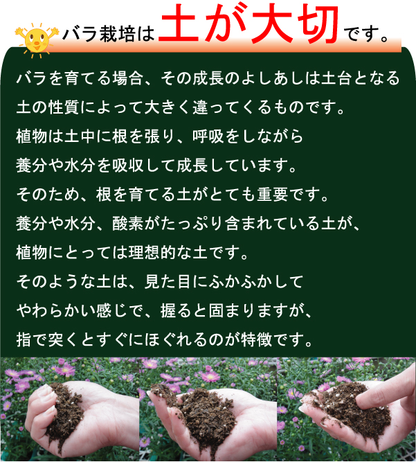 bara_tuchi-3.jpg
