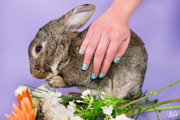 bunny-nails-5