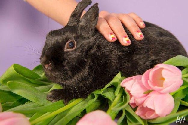 bunny-nails-6