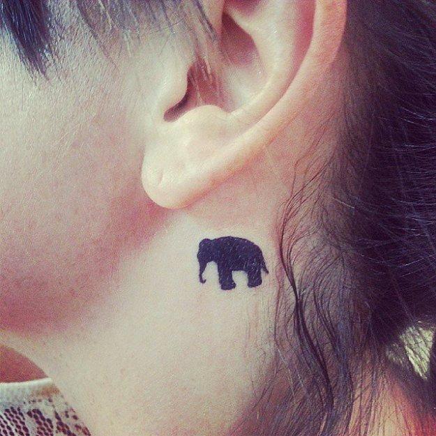 Elephant-Lover