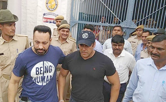 Salman Khan gets bail in Blackbuck poaching case from Jodhpur court