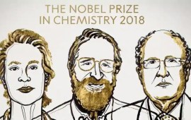 Frances H Arnold, George P Smith, Sir Gregory P Winter win 2018 Nobel Prize in Chemistry