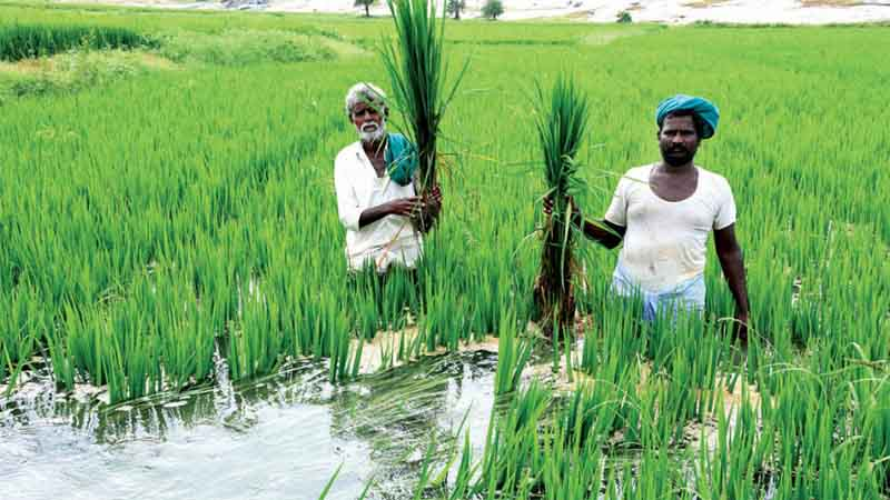 Centre asks states to speed up farmer enrolment under PM-KISAN
