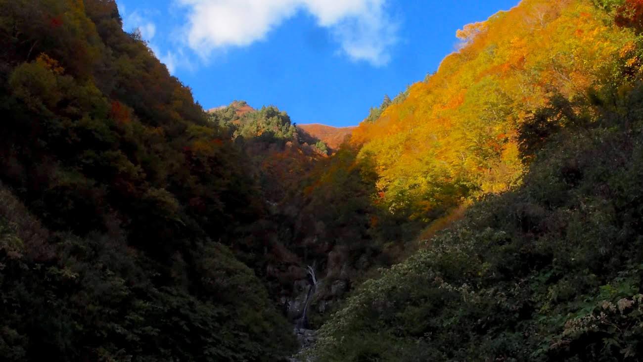 Shiga kogen at autumn in yamanouchi town , nagano