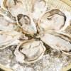 これで牡蠣料理は完璧!レシピをご紹介!焼き物とレンジで簡単に!
