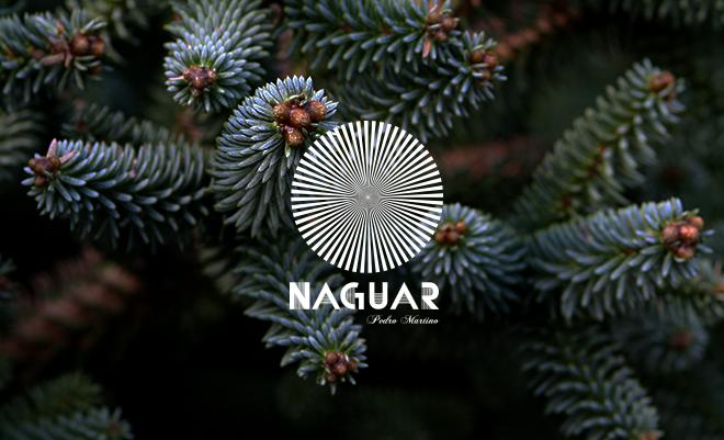 Menú Nochevieja 2013, celebra la entrada del año en Naguar