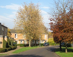 Photograph of Chapel Wood neighbourhood