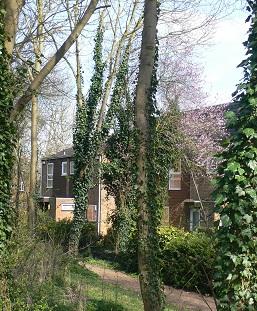 Photograph of Foxbury neighbourhood