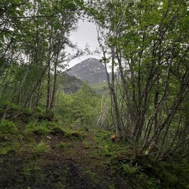 geiranger-fjord-23-msc-meraviglia-dxn