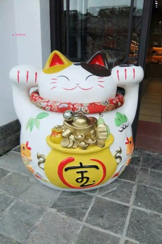 Bringing Fortune Cat