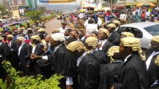 Southern-Cameroons-lawyers