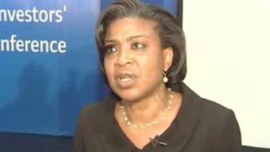 Photo of Why We Are Increasing Borrowing – FG