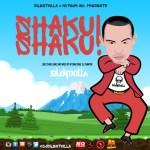 MIXTAPE: Dj SilentKilla – Shaku Shaku Mix
