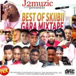 MIXTAPE: GARA MIXTAPE (Best Of Skiibii) Mixed By DJ J2 @Youngestdj_j2