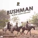 MUSIC: Dr Dolor ft. Slimcase, Broda Shaggi – Bushman