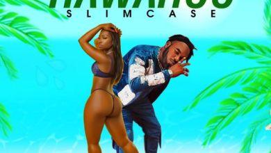 Photo of Slimcase – Hawahoo