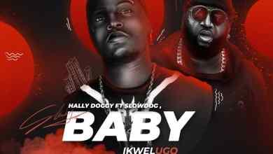 Photo of Hally Doggy Ft Slowdog – Ikwelugo Remix