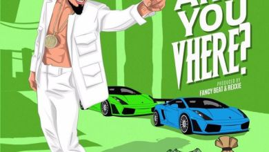 Photo of Skiibii – Are You Vhere