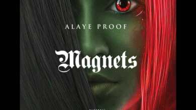 Photo of Alaye Proof – Magnets
