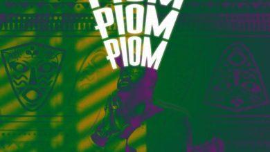 Photo of Harrysong – Piom Piom Piom