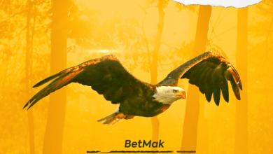 Photo of Betmak – Winner
