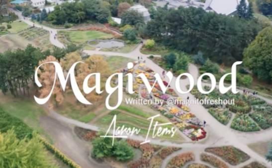 Download MP3: Magnito ft. Bovi – Magiwood