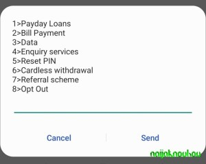 Check Access Bank Account Number (2)