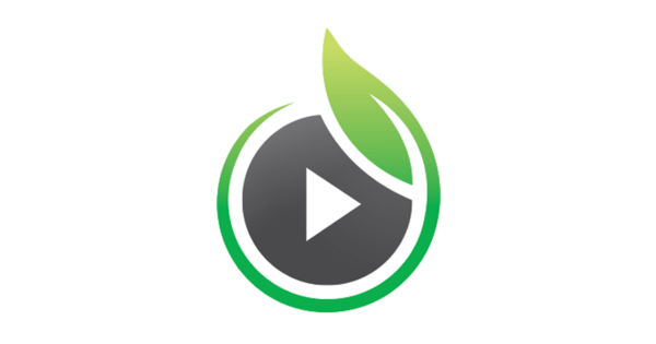 video hosting websites