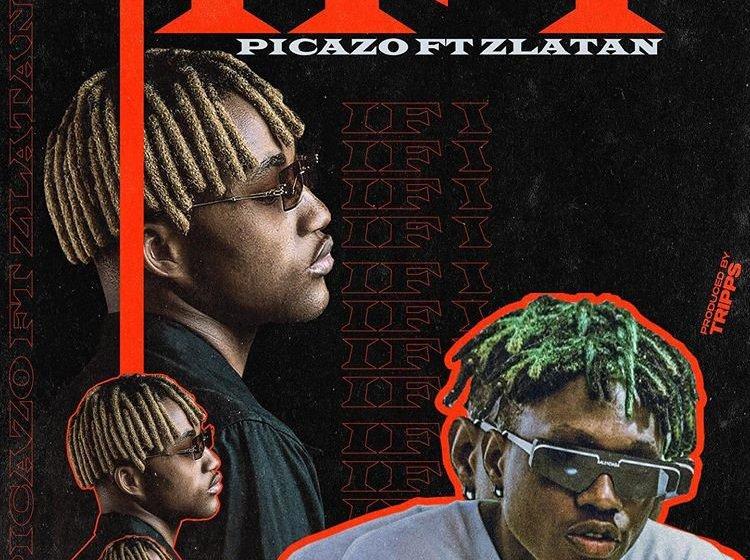 [Music]Picazo Ft. Zlatan – If I