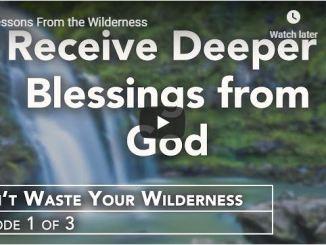 Rabbi Schneider Sermon - Lessons From the Wilderness