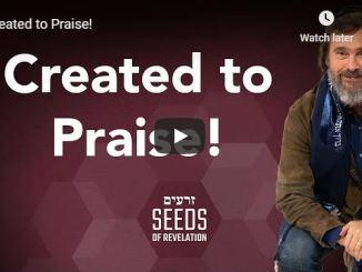Rabbi Schneider Sermon - Created to Praise - May 1 2020