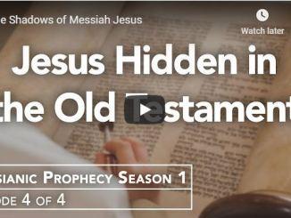 Rabbi Schneider Sermon - The Shadows of Messiah Jesus - May 18 2020