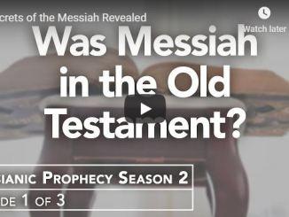 Rabbi Schneider Sermon - Secrets of the Messiah Revealed - June 2020