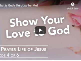 Rabbi Schneider Sermon - What is God's Purpose for Me - June 4 2020