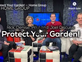 Home Group Sermon - Protect Your Garden - July 2020