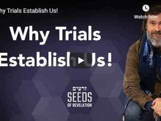 Rabbi Schneider Sermon - Why Trials Establish Us - August 7 2020