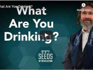 Rabbi Schneider - What Are You Drinking