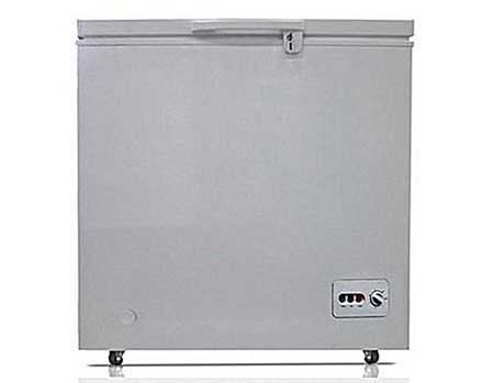 Best Deep Chest Freezer for business use