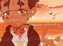 Lil Uzi Vert - Sanguine Paradise 11 Download