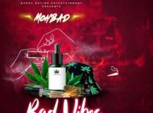 Mohbad - Bad Vibes (Freestyle) 12 Download