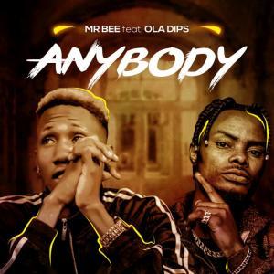 Mr Bee - Anybody Ft. OlaDips Mp3 Audio Download