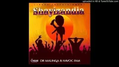 Dr Malinga & Havoc Fam - Shayizandla Mp3 Audio Download