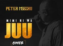 Peter Msechu - Mini Ni Wa Juu 17 Download
