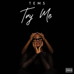 INSTRUMENTAL: Tems - Try Me Download