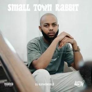 DJ Kaymoworld - Small Town Rabbit (EP)